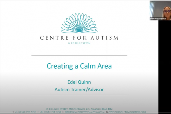 https://www.middletownautism.com/covid19/creating-a-calm-area-7-2020