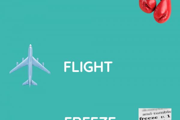 https://www.middletownautism.com/social-media/throwback-thursday-jed-baker-on-fight-flight-freeze-4-2021