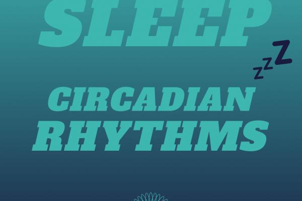 https://www.middletownautism.com/social-media/sleep-circadian-rhythms-3-2021-1